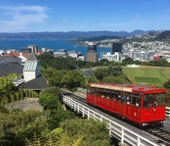 Renting cars - touring Wellington